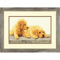 Dimensions | kit  Chiots Golden Retriever  Dimensions  70-35309 | Broderie du monde