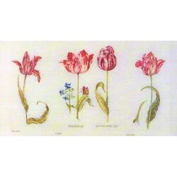 Thea Gouverneur 786  Tulipes de Jacob Marrel  Broderie  Point de croix compté