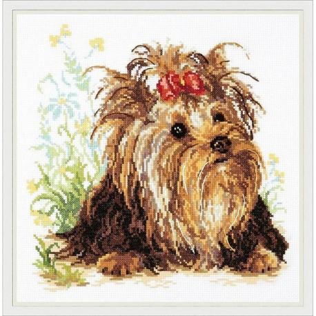 Chudo Igla  Magic Needle  Yorkshire Terrier  59-13  Broderie  Point de croix compté
