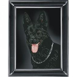 Krasa i Tvorchist | kit  Rottweiler | Krasa i Tvorchist  70912 | Broderie du monde