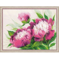 Kit point compté  Pivoines roses 100-039  Riolis