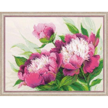 Pivoines  roses  100/039  Riolis  Broderie  Point de croix compté  Aida 5.4