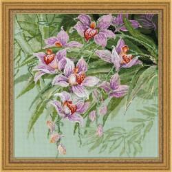 Riolis  Tropical  Orchids  1401  Broderie  Point de croix compté  Aida 5.5
