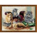 Famille  de  chat  1327  Riolis  Broderie  Point de croix compté