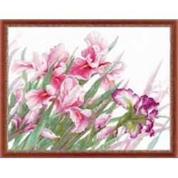 Riolis  Irises 100/024  Broderie  Point de croix compté