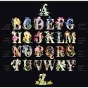 Alphabet floral  2025.05 Thea Gouverneur  Kit Broderie  Point de croix compté  Aida noir