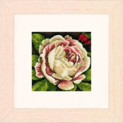 Rose blanche  0144517 Lanarte  Broderie  Point de croix compté  Étamine