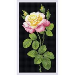 Broderie Diamant  RIOLIS AM0024  Merveilleuse rose