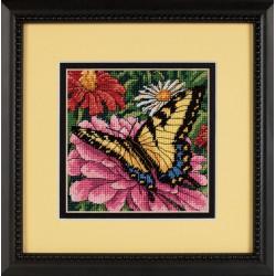 Dimensions  Papillon  sur  zinnia  7232