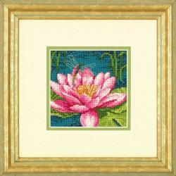 Dimensions | kit  Fleurs élégantes  Dimensions  6230 | Broderie du monde
