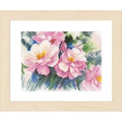 Lanarte 0150167  Roses magnifiques  Broderie  Point de croix compté  Aida