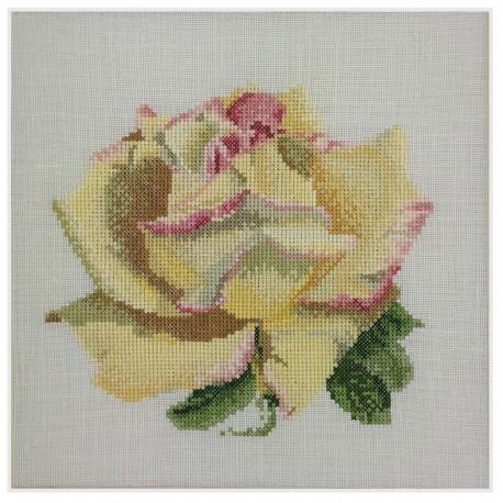 Point de croix  Rose jaune 3075A  Thea Gouverneur