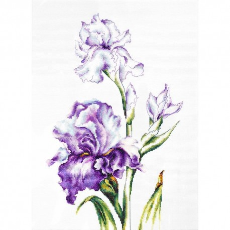 Kit point de croix compté  Irises B2251  Luca-S