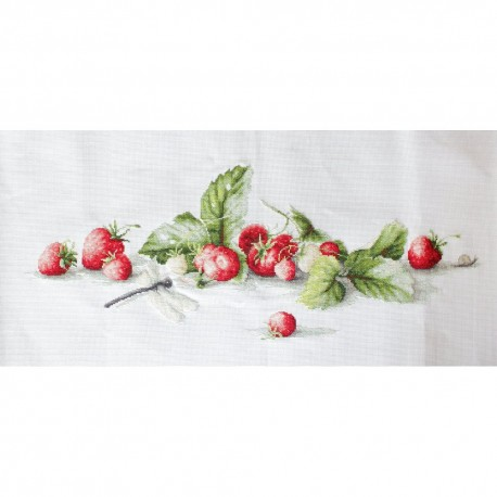 Kit point compté  Nature morte  aux  fraises  B2254  Luca-S