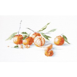 Kit point compté  Nature morte  Mandarines B2255  Luca-S