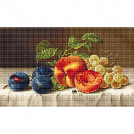 Kit point compté  Nature morte avec fruits B592  Luca-S