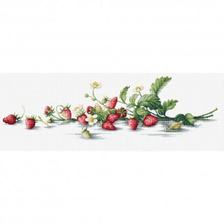Kit point de croix  Nature morte aux fraises B2266  Luca-S