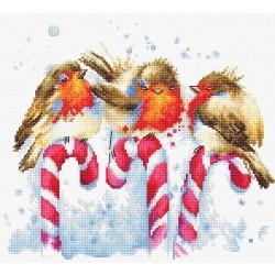 Kit point de croix  Oiseaux de Noël B1154  Luca-S