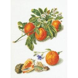 Kit point compté  Oranges et Mandarines 3061A  Thea Gouverneur
