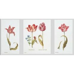 Thea Gouverneur 2039  Tulipes  Broderie  Point de croix compté  sur  Lin 14 fils