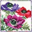 Bothy Threads XGF4  Fleurs de jardin  Anémone  Broderie  Point de croix compté