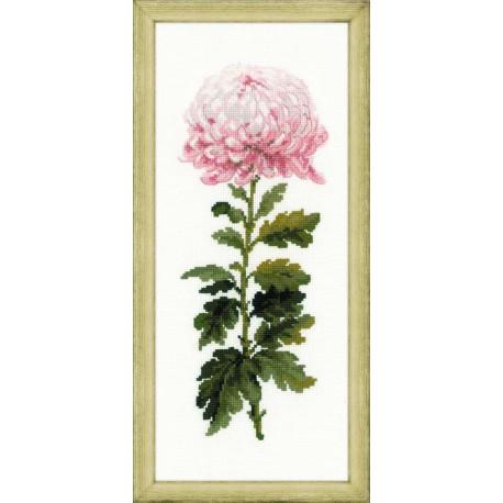 Riolis  kit Gentle Flower | Riolis  1425 | Broderie du monde
