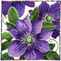 Bothy Threads XGF5  Fleurs de jardin  Clématite  Broderie  Point de croix compté