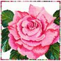 Bothy Threads XGF6  Fleurs de jardin  Rose  Broderie  Point de croix compté