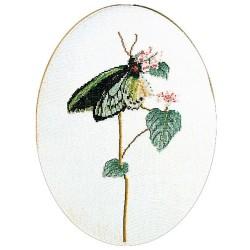 Kit point de croix  Papillon vert 1022  Thea Gouverneur