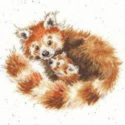 Kit point compté  Panda roux XHD89  Bothy Threads
