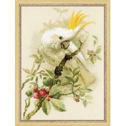 Riolis  kit White Cockatoo | Riolis  1362 | Broderie du monde