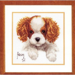 Vervaco,  kit  Chiot  King Charles