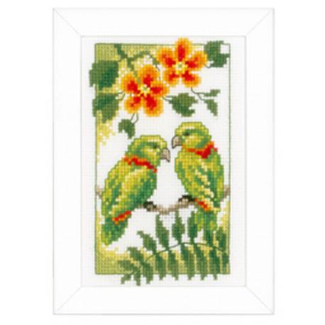 Vervaco,  kit  Oiseaux  exotiques