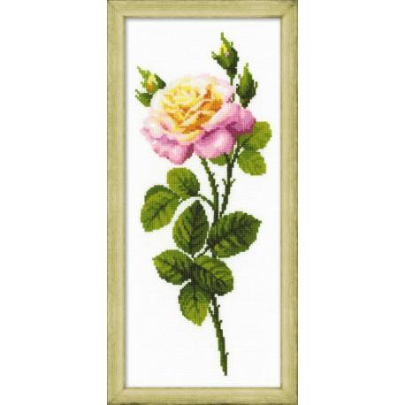 Riolis  kit Wonderful Rose   Riolis  1331   Broderie du monde