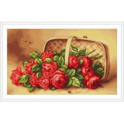 Luca-S  Panier  renversé  de  Roses  B 499