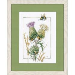 Abeilles  sur  fleurs  de  Chardon  0021621  Etamine