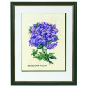 Rhododendron  lilas  12-894  Eva Rosenstand