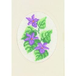 Carte  et  Enveloppe  Violettes  17-5106  Permin