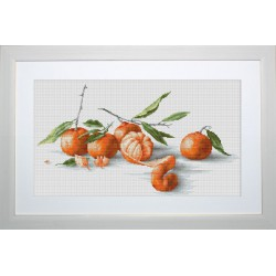 Nature  Morte  Mandarines  B2255  Luca-S