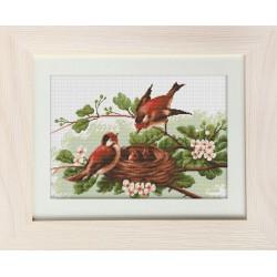 Oiseaux  dans  le  nid  BM3005  Luca-S
