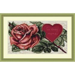 Rose  rouge  et  cœur  B233  Luca-S