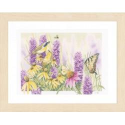 Papillons  et  echinacea  0147541  Lanarte  Aïda