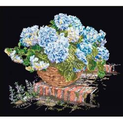 Hortensia  bleu  2046.05  Aïda  noire  Thea Gouverneur