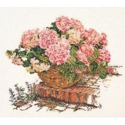 Hortensia  rose  2047  Lin  Thea Gouverneur