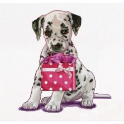 Puppy  went  shopping  737A  Aïda  Thea Gouverneur