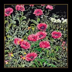Coquelicots  roses  2061.05  Aïda  noir  Thea Gouverneur
