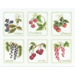 Six  Fruits  2091  Lin  Thea Gouverneur