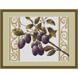 Branche  de  prune  fond  blanc  B278  Luca-S