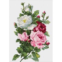Bouquet  de  Roses  B2285  Luca-S