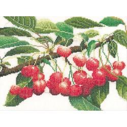 Branche  de  cerises  3014  Lin  Thea Gouverneur